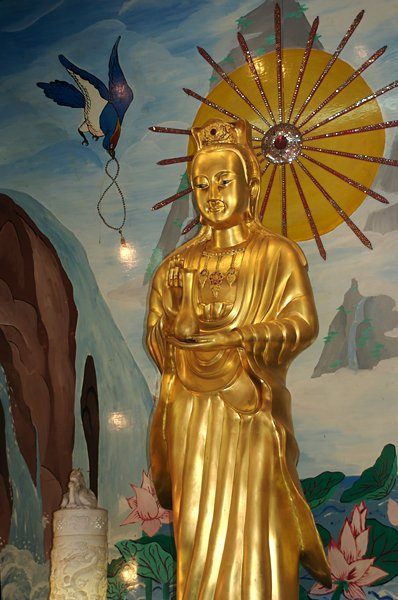 guan yim View the profiles of people named guan yin join facebook to connect with guan yin and others you may know facebook gives people the power to share and.