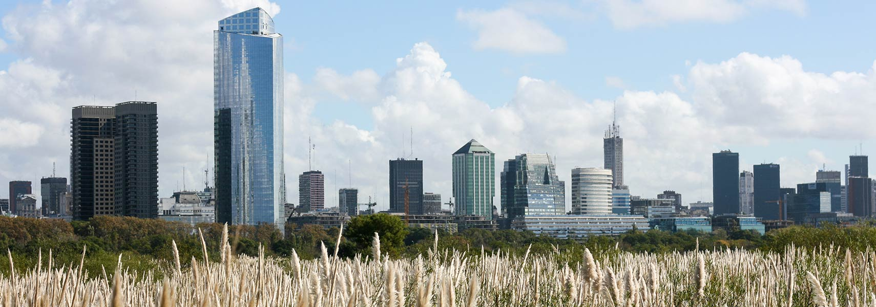 Buenos Aires skyline from Costanera Sur Ecological Reserve.