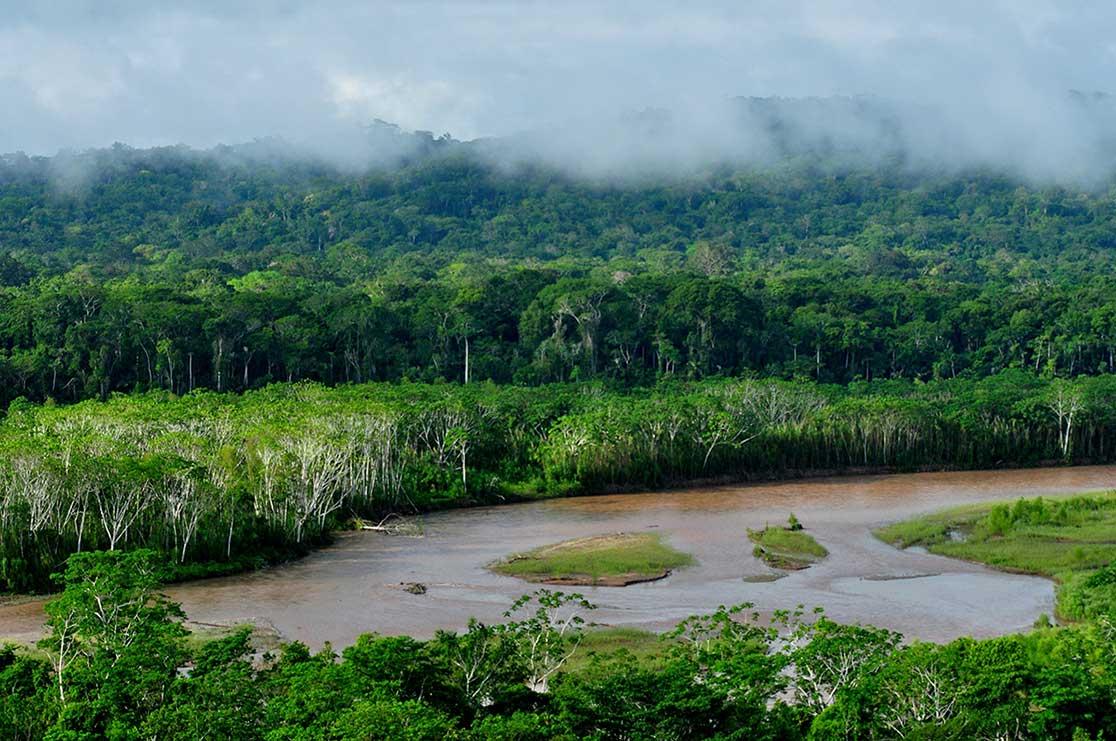 Madidi National Park In The Upper River Basin Bolivia