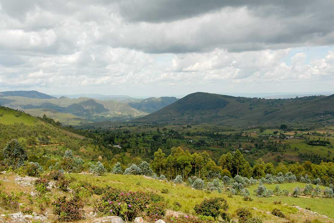 burundi - photo #39