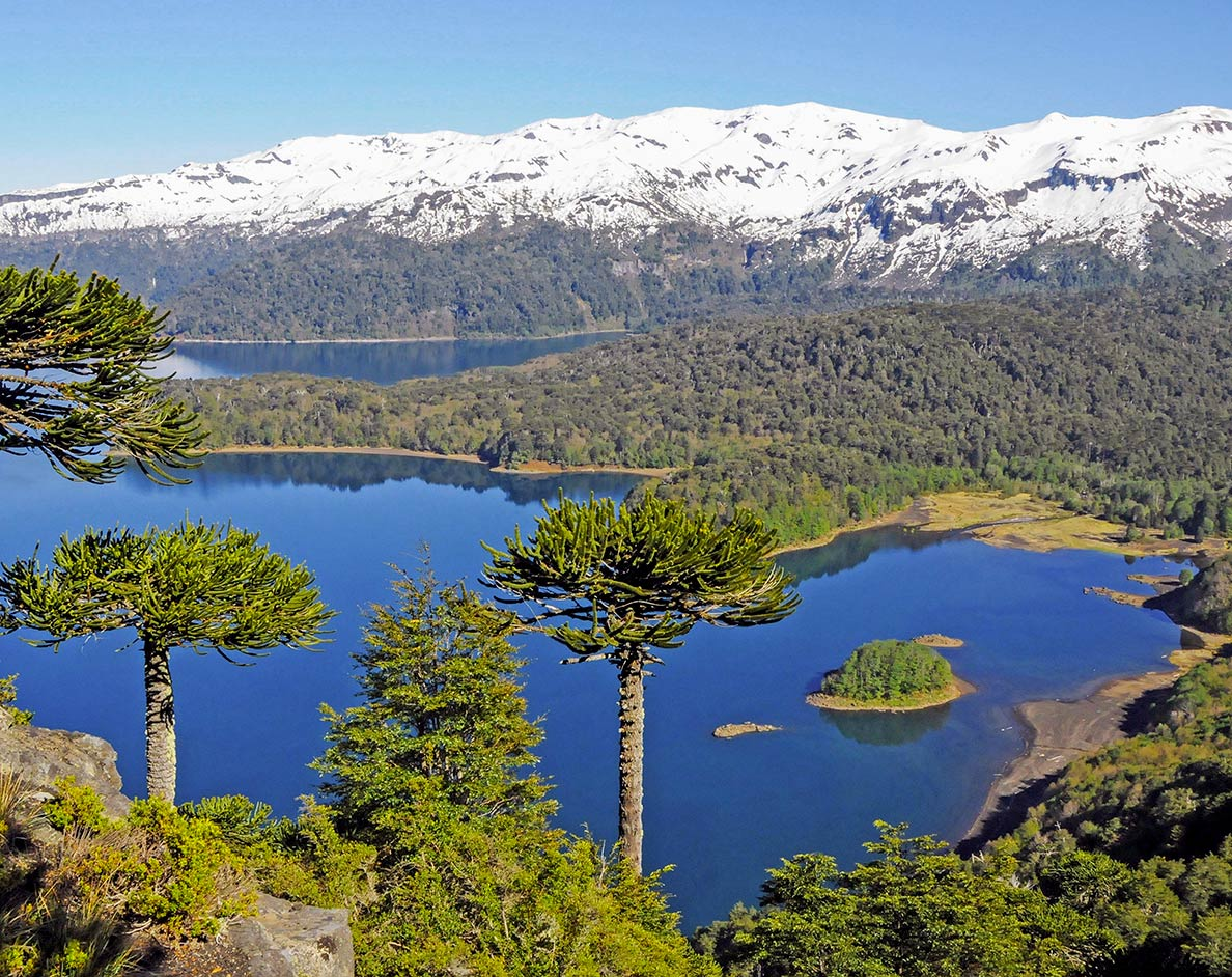 Conguillío Lake, Araucanía Region of Chile