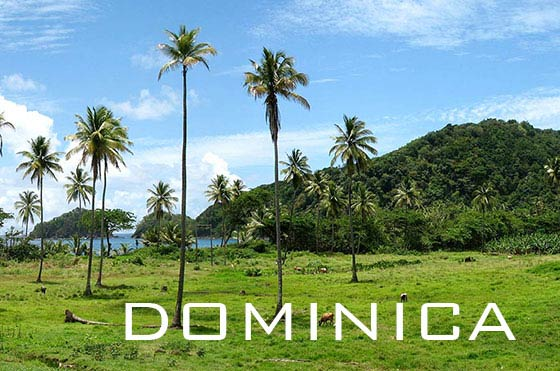 Typical Dominica landscape