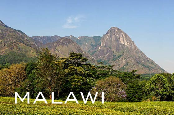 Mount Mulanje in Malawi
