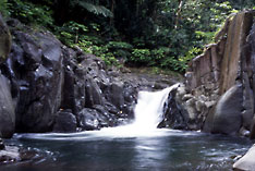 Dominica - Rain forest and waterfalls