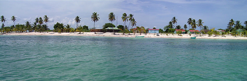 Beach on island of Saona, Dominican Republic