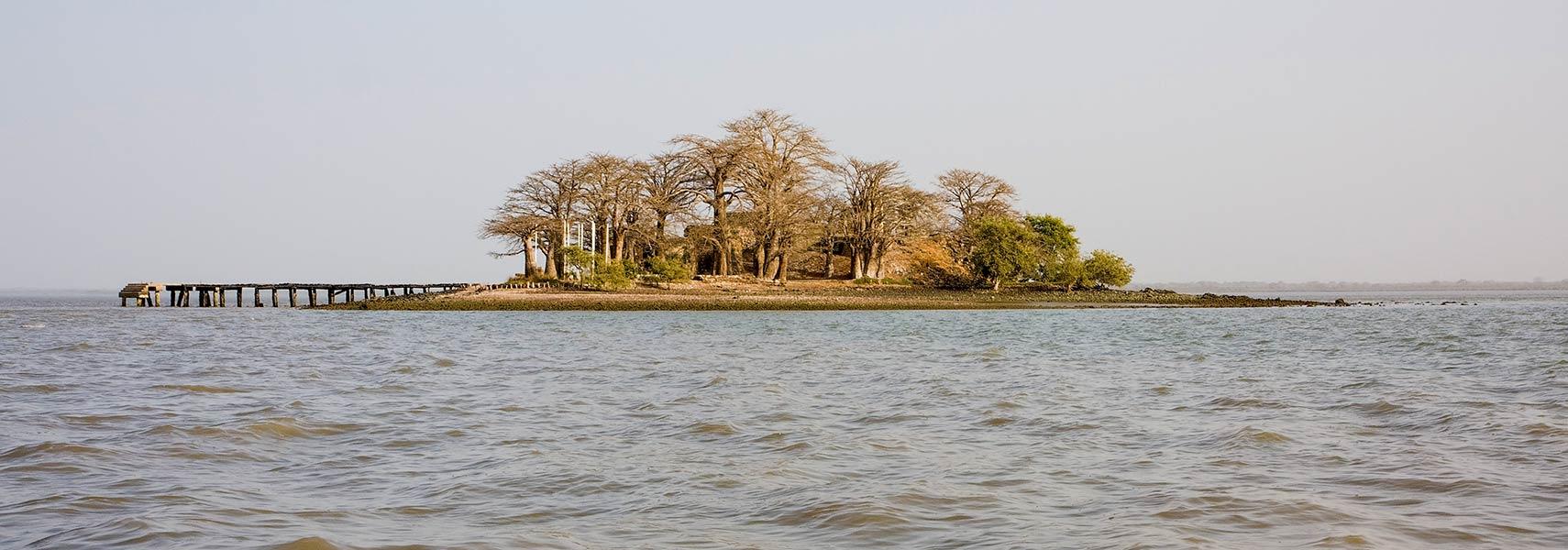 River Island Business
