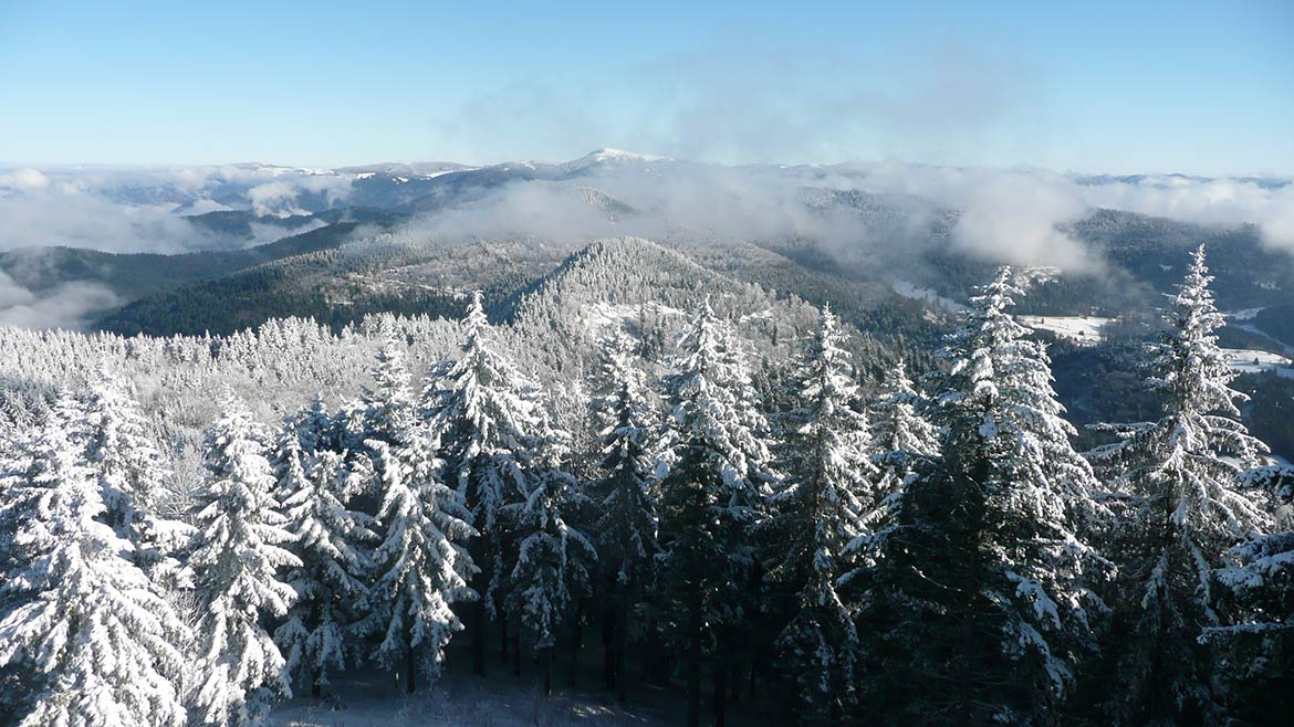 Black Forest, view from the Blauen mountain towards the Belchen