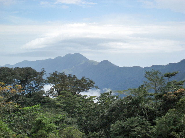 Nimba mountain range