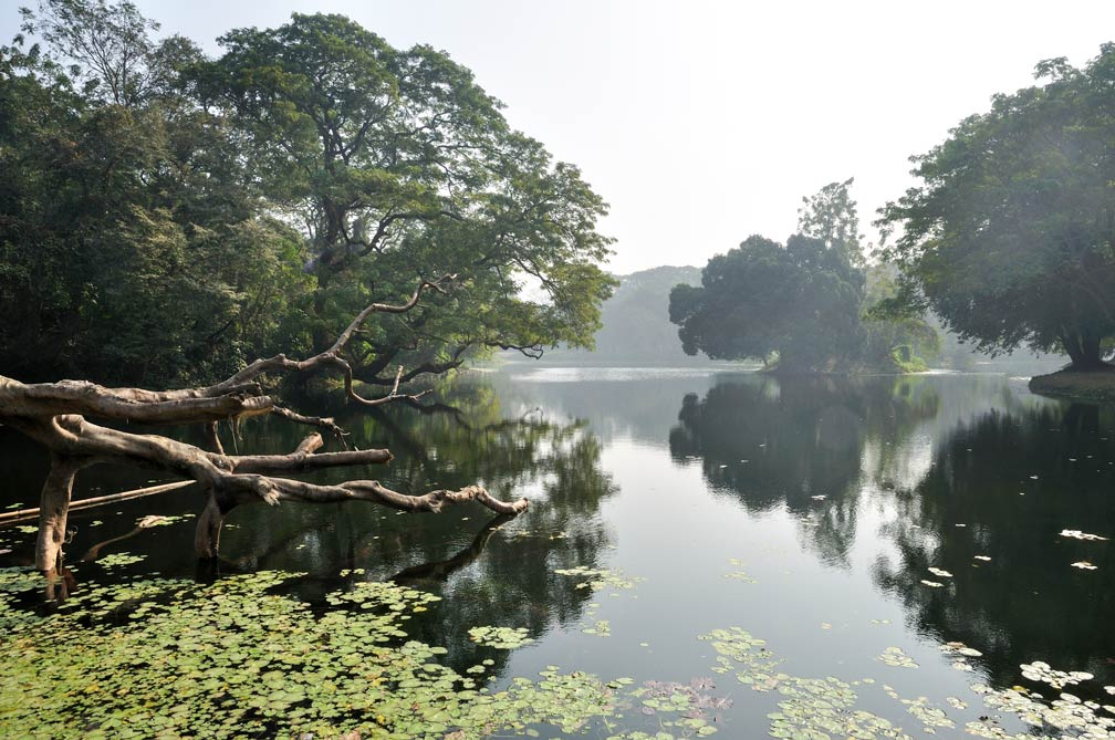 The Indian Botanic Garden at Howrah