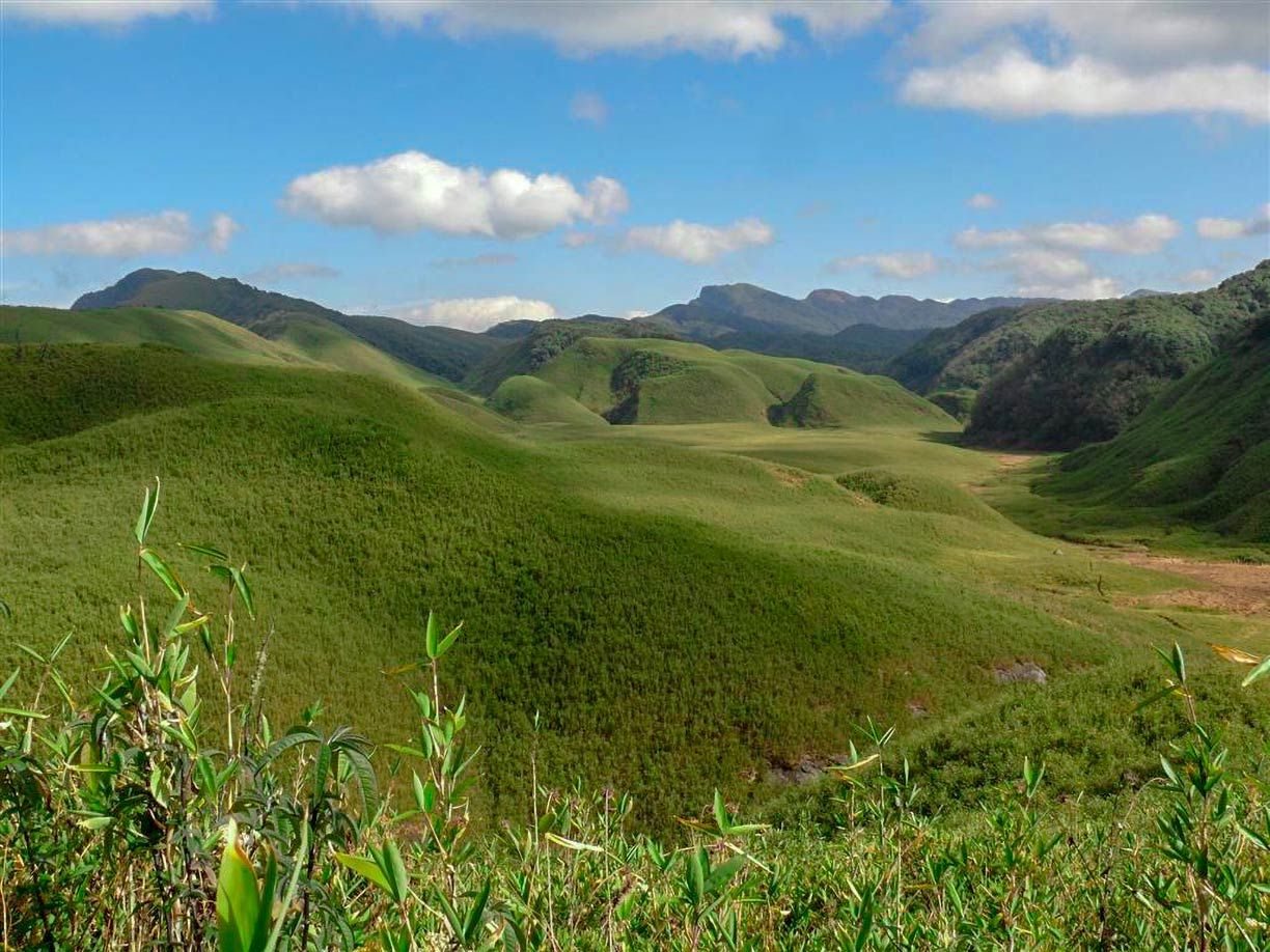 Dzukou Valley, Manipur, India