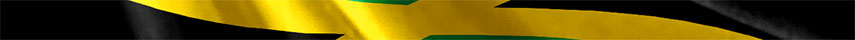 Jamaica  Flag detail
