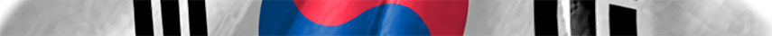 South Korea flag detail