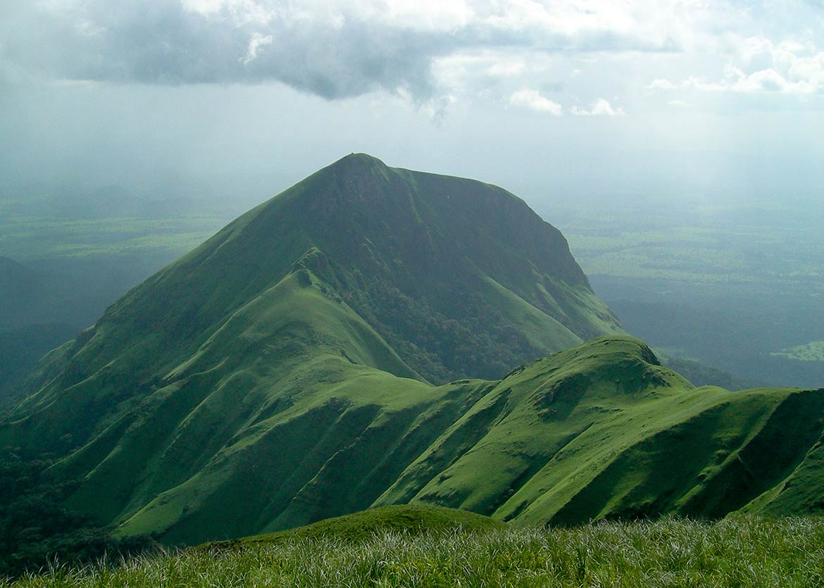 Mount Nimba within Mount Nimba Strict Nature Reserve