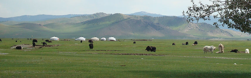 Pasture land with yurts in central Mongolia