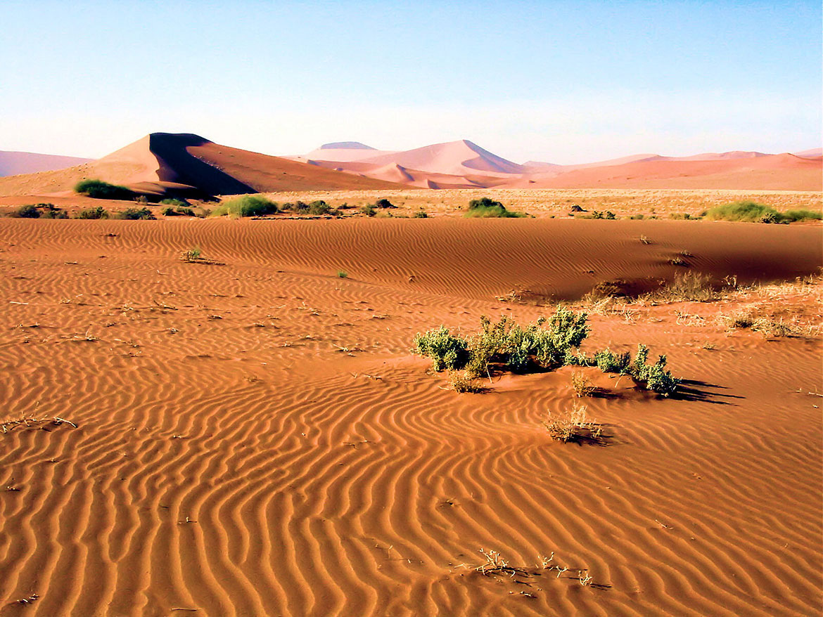 Naukluft Park in the Namib desert, Namibia