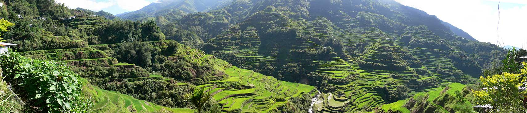 Banaue Rice Terraces, Ifugao Province, Philippines