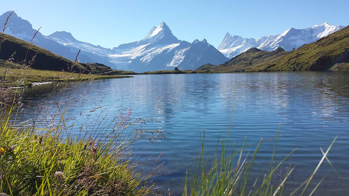 Bachalpsee (lake) and Schreckhorn mountain