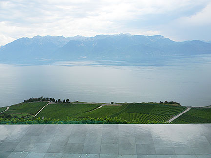 Lac Leman, Swand