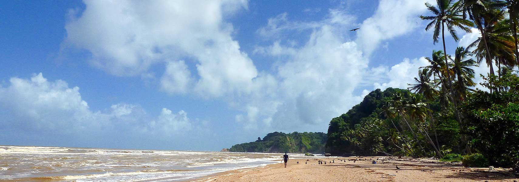 Trinidad's east coast at the Atlantic Ocean