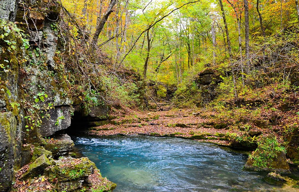 Greer Spring in the southeast portion of the Ozark Plateau