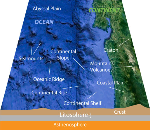 Coastal Zone with coastal plain, continental shelf, continental slope and abyssal plain