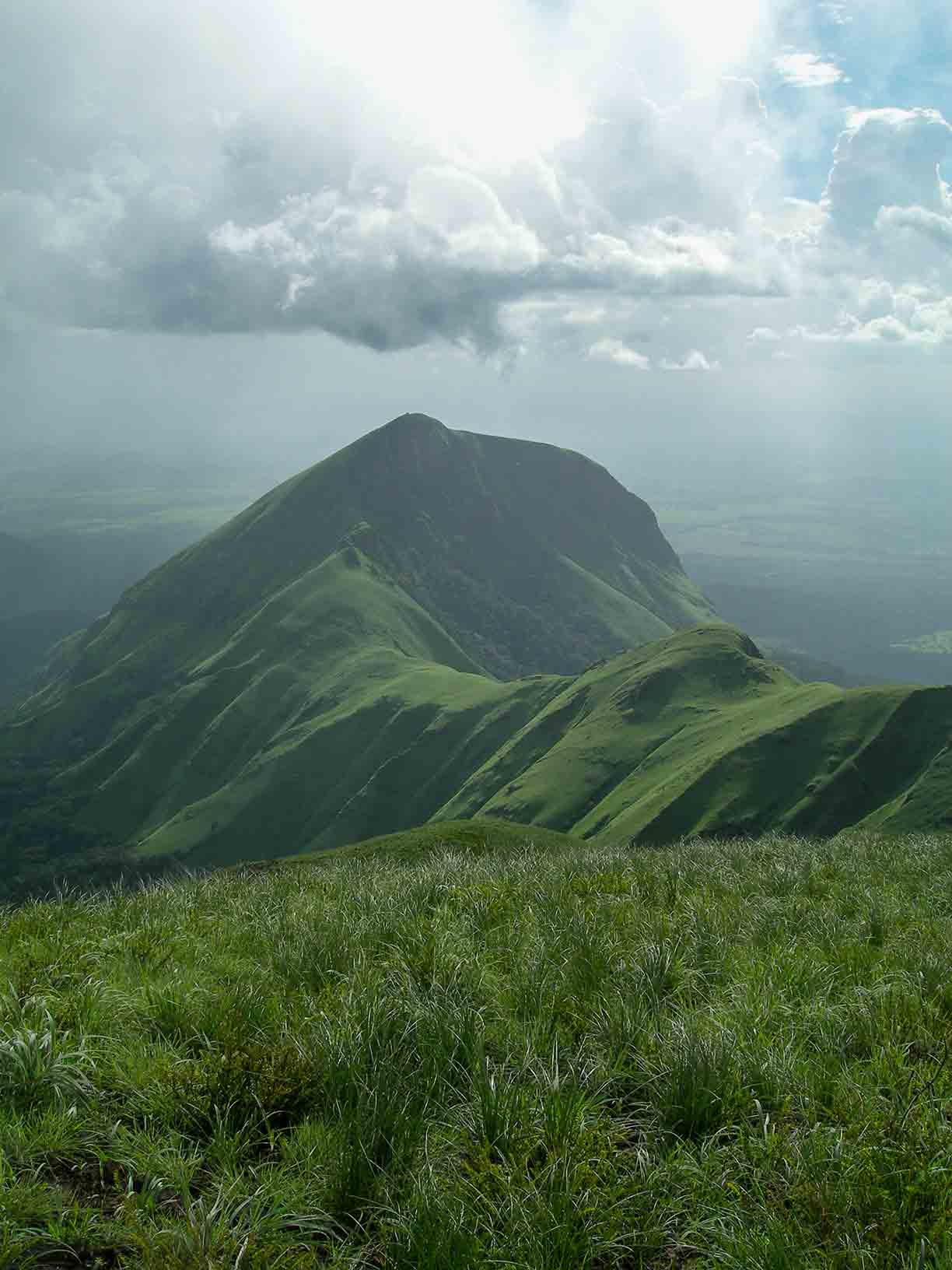 Mount Nimba the border of Ivory Coast and Guinea in West Africa