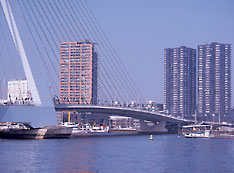 Rotterdam- South-Holland