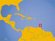 Grenada City Area Code