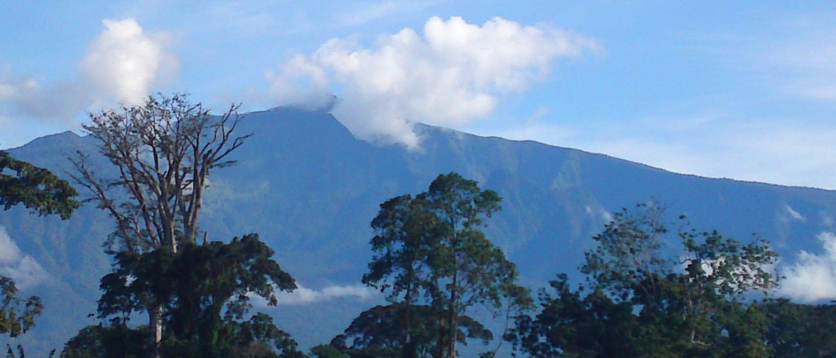 'Pico Basilé on the island of Bioko' from the web at 'http://www.nationsonline.org/oneworld/../gallery/Equatorial_Guinea/Pico-Basile.jpg'