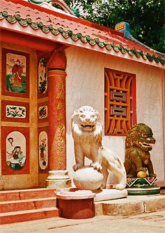 Lion Mythology Amp Lore Updated On 10 14 2011